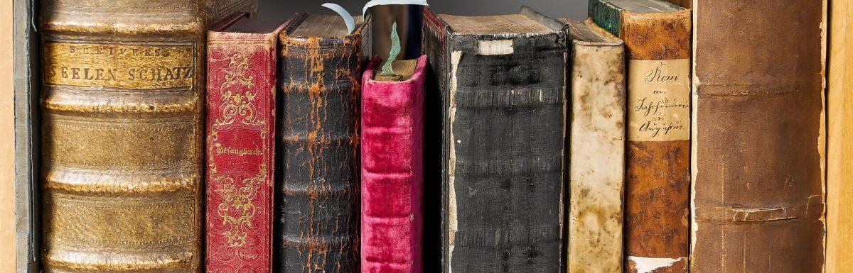 Reflexiones de un escritor en ciernes en el Día del Libro